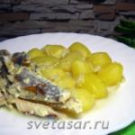 Картофель с рыбой, тушёные в сливках